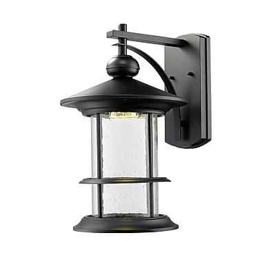Z-Lite 552B-BK-LED Genesis Outdoor Light Fixture, 8 Bulb, Clear Seedy