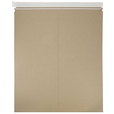 JAM Paper Photo Mailer Stiff Envelopes with Self Adhesive Closure 17 x 21 Brown Kraft Recycled Sold Individually 8866647
