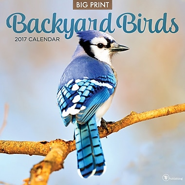 TF Publishing 2017 Backyard Birds Wall Calendar, 12