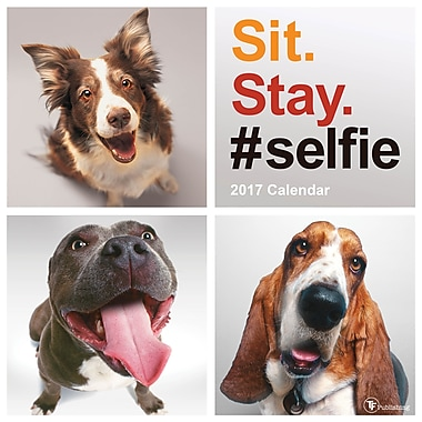 TF Publishing – Calendrier mural 2017, Sit Stay Selfie, 12 x 12 po