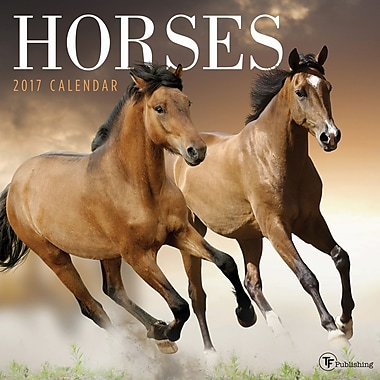 TF Publishing 2017 Horses Wall Calendar, 12