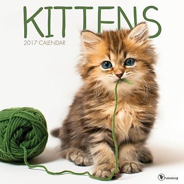 TF Publishing 2017 Kittens Wall Calendar, 12