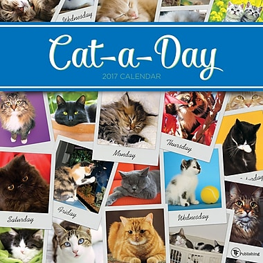 TF Publishing 2017 CatADay Wall Calendar, 12