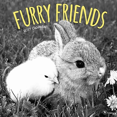 TF Publishing 2017 Furry Friends Wall Calendar, 12