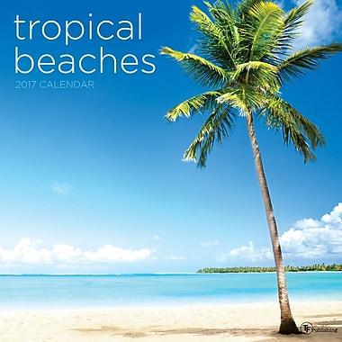 TF Publishing 2017 Tropical Beaches Wall Calendar, 12