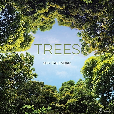 TF Publishing 2017 Trees Wall Calendar, 12