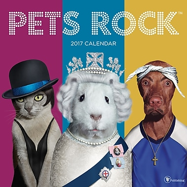 TF Publishing – Calendrier mural 2017, Pets Rock, 12 x 12 po