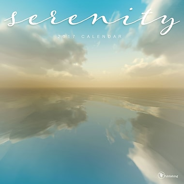 TF Publishing 2017 Serenity Wall Calendar, 12