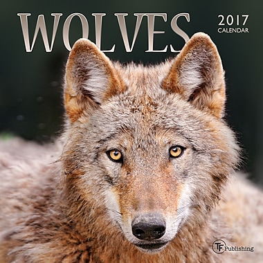 TF Publishing 2017 Wolves Mini Calendar, 7