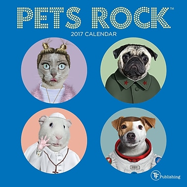 TF Publishing – Calendrier mural 2017, Pets Rock, 7 x 7 po