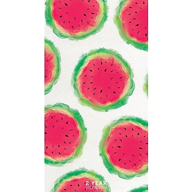 TF Publishing 2017-2018 Watermelons 2 Year Pocket Calendar