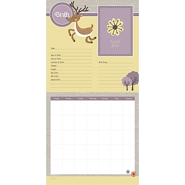 TF Publishing Baby's First Year Woodland Non-Dated Wall Calendar, 12