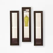 Rayne Mirrors Molly Dawn Country Pine Mirror Panels (Set of 3); 27.5'' H x 9.5'' W x 0.75'' D