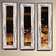 Rayne Mirrors Molly Dawn American Made Rustic Seaside Mirror Panel; 29.5'' H x 11.5'' W x 0.75'' D