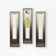 Rayne Mirrors Molly Dawn Brushed Silver Mirror Panels (Set of 3); 33.5'' H x 12.5'' W x 0.75'' D