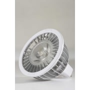 Royal Pacific 1 Light LED