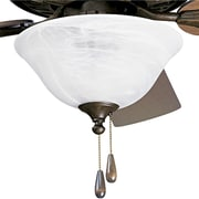 Progress Lighting AirPro 2 Light Bowl Ceiling Fan Light Kit; Weathered Bronze