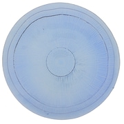 French Home Birch Platter; Sapphire Blue