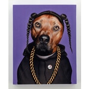 Empire Art Direct Pets Rock  ''Rap'' Graphic Art on Wrapped Canvas