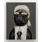 Empire Art Direct Pets Rock  ''Fashion'' Graphic Art on Wrapped Canvas
