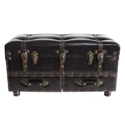 River of Goods Faux Leather Trunk; Brown