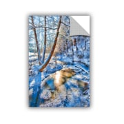 ArtWall Frozen Winter Creek by Julie Mann Sperry Photographic Print; 18'' H x 12'' W x 0.1'' D