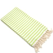 Linum Home Textiles Fun in the Sun Pestemal/Fouta Bath Towel; Pistachio
