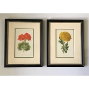Floral Home Decor Vintage Botanical 2 Piece Framed Painting Print Set