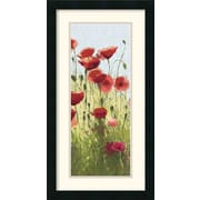 Amanti Art 'Mountain Poppies I' by Shirley Novak Framed Painting Print