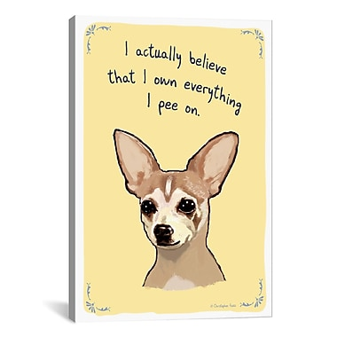 iCanvas Territorial Chihuahua by Tiny Confessions Graphic Art on Wrapped Canvas
