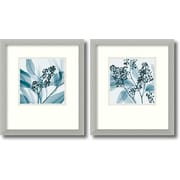 Amanti Art 'Silver Eucalyptus' by Steven N. Meyers 2 Piece Framed Photographic Print Set