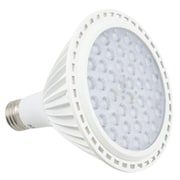 American Lighting LLC 16W (2700K) LED Light Bulb
