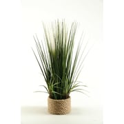 D & W Silks 30'' Mixed Grass in Round Ceramic Planter