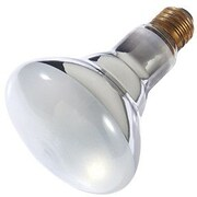 SmartElectric 65W BR30 Light Bulb