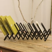 Creative Co-Op Inspired Home Accordion Plate/File Rack