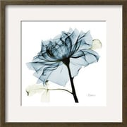 Wildon Home   'Blue Rose 2' by Albert Koetsier Framed Graphic Art