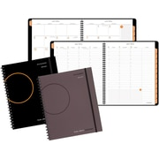 """2016-2017 AT-A-GLANCE® 11"""" x 8 3/4"""" Appointment Book, Assorted (70-5957-00-17)"""