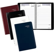 "2016-2017 DayMinder® 8"" x 4 7/8"" Appointment Book, Assorted (AY44-10-17)"