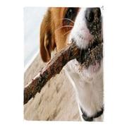 Hallmark Birthday Greeting Card, Inside: Happy Birthday! Hope Nobody Else Got You a Stick (0349ZZB5191)