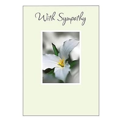 Hallmark Sympathy Greeting Card with Sympathy 0250QSY1904