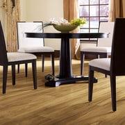 Shaw Floors Natural Impact II 8'' x 48'' x 7.94mm Oak Laminate in Acorn Tan Oak