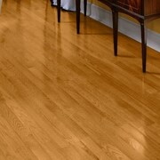 Bruce Flooring Fulton 3-1/4'' Solid Red Oak Hardwood Flooring in Butterscotch