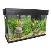 Hagen Fluval 25 Gallon Accent Aquarium