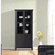 Homestar 2 Door Storage Cabinet; Black