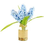 LCGFlorals Hyacinths in a Jar w/ River Rocks and Faux Water