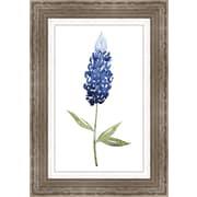 Ashton Wall D cor LLC In Bloom 'Bluebonnet II' Framed Painting Print in Blue