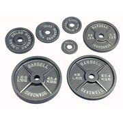 USA Sports by Troy Barbell 100 lbs Olympic Plate in Gray