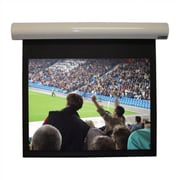 Vutec Lectric I Matte Black Electric Projection Screen Low Voltage Motor; 115'' diagonal