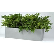Allied Molded Products Cannon Rectangular Planter Box; Candy Apple