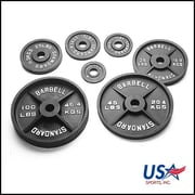 USA Sports by Troy Barbell 100 lbs Olympic Plate in Black